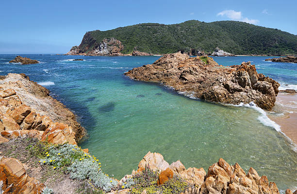 the heads in knysna where the lagoon enters the sea - nature reserve stock photos and pictures