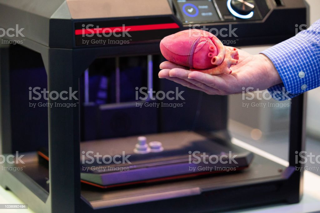 The heart printed on a 3d printer The cardiosurgeon demonstrates the heart printed on a 3d printer 3D Printing Stock Photo