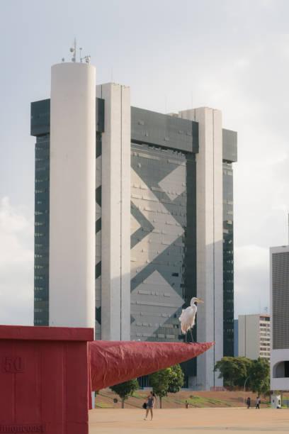 A garça e o edifício-sede do banco do Brasil - foto de acervo