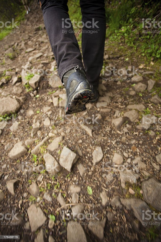 The Hikers Boot royalty-free stock photo