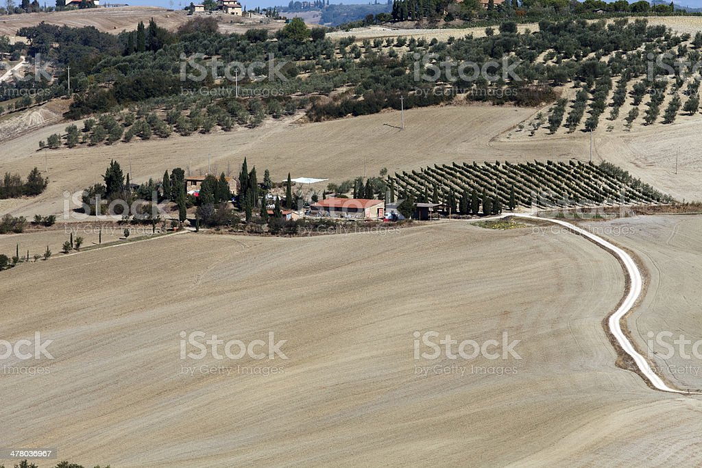 The hills around Pienza and Monticchiello royalty-free stock photo