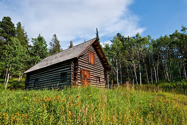 historic lubec barn (1926) - st. mary lake stock pictures, royalty-free photos & images