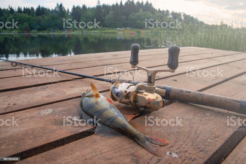 Le poisson accroché un perchoir avec un appât de pêche. - Photo