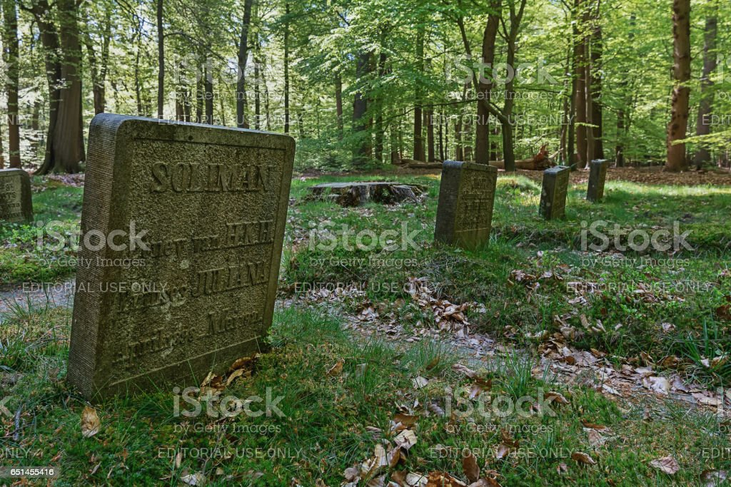 The Horse Cemetery of the Dutch royal family. stock photo
