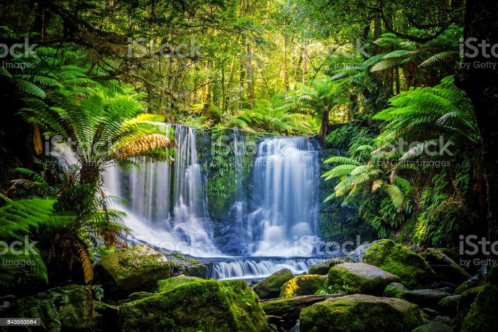 The Horseshoe Falls at the Mt Field National Park, Tasmania, Australia stock photo