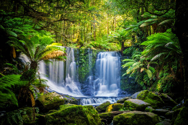 The Horseshoe Falls at the Mt Field National Park, Tasmania, Australia stock photo