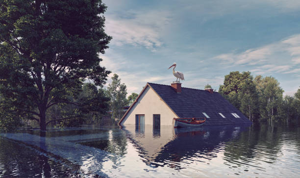 das haus und der baum wasser überschwemmen. - rettungsinsel stock-fotos und bilder