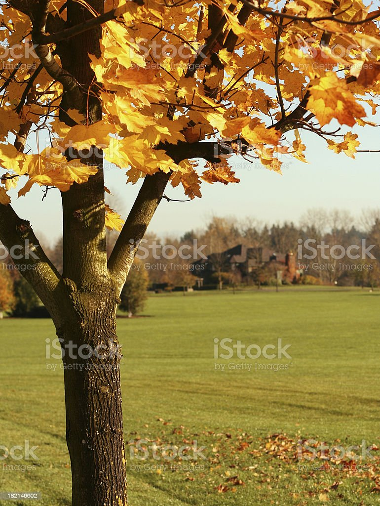 The House In Autumn royalty-free stock photo