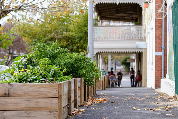 The Hub Boxes Public Planter Boxes in Castlemaine, Victoria apostrophe stock pictures, royalty-free photos & images