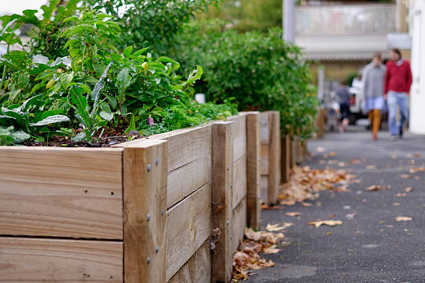 The Hub Boxes Public Planter Boxes in Castlemaine, VictoriaPublic Planter Boxes in Castlemaine, Victoria apostrophe stock pictures, royalty-free photos & images