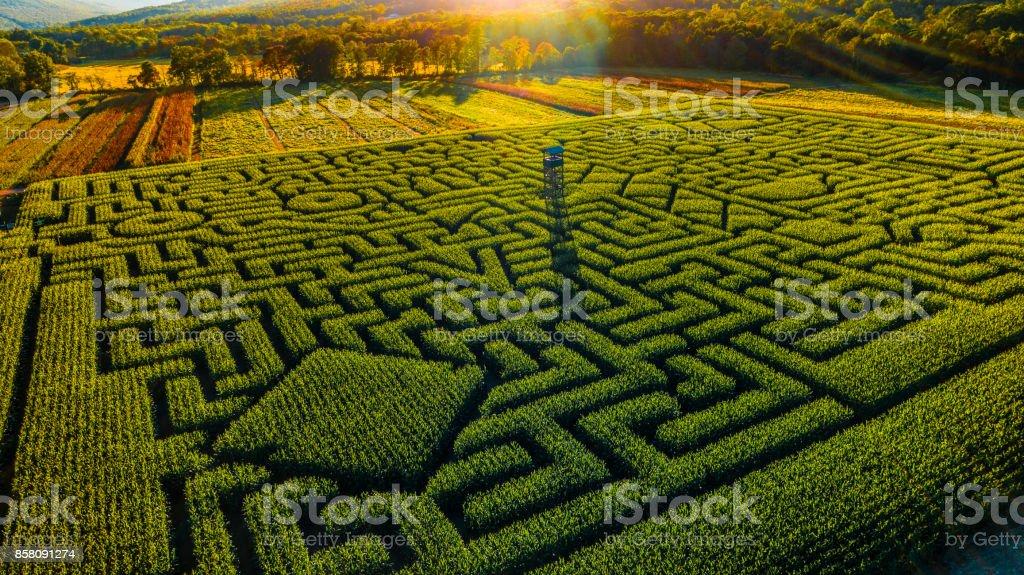 The huge Halloween's Corn Maze in Pennsylvania, Poconos Region stock photo