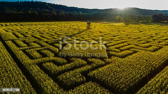 istock The huge Halloween's Corn Maze in Pennsylvania, Poconos Region 858091296