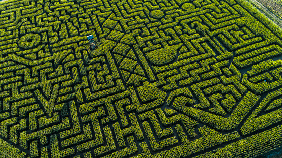 istock The huge Halloween's Corn Maze in Pennsylvania, Poconos Region 858091350