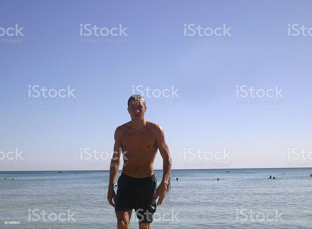 the huhu at the beach royalty-free stock photo