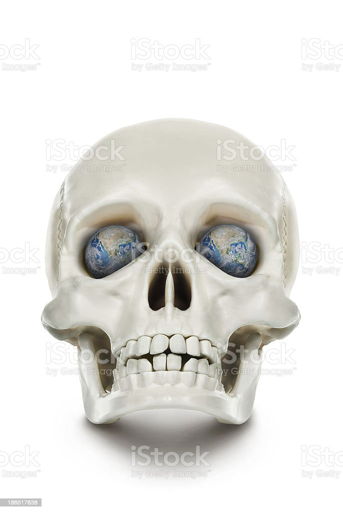 The human skull isolated on white background. royalty-free stock photo