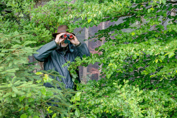 The hunter watches in the bush. stock photo