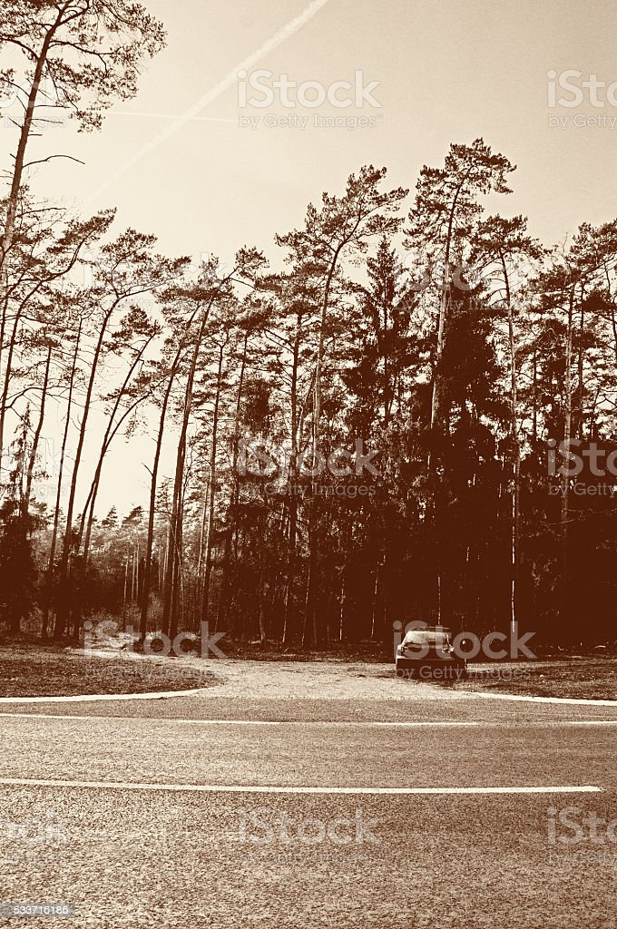 The image of car, autumn stock photo