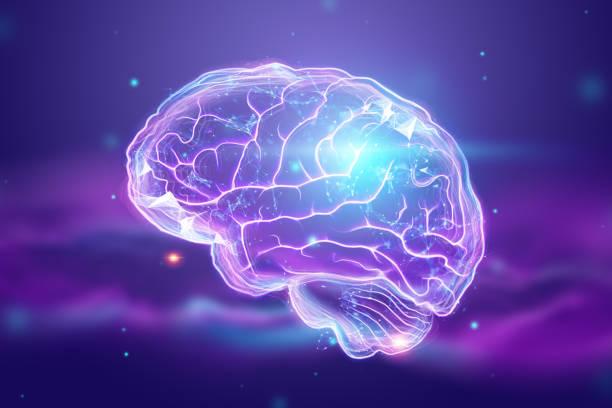 a imagem do cérebro humano, um holograma, um fundo escuro. o conceito de inteligência artificial, redes neurais, robotização, aprendizado de máquina. ilustração 3d, espaço da cópia. - brain - fotografias e filmes do acervo