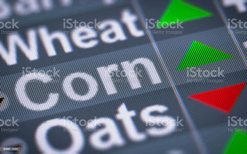 The Index of Corn on The Screen. stock photo