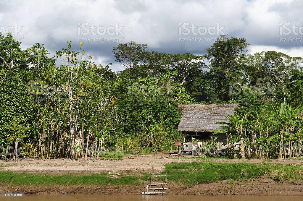 The Indian settlement of Peruvian Amazonas stock photo