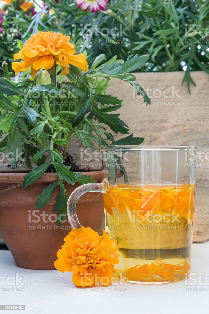 The infusion of the petals Tagetes in glass – zdjęcie