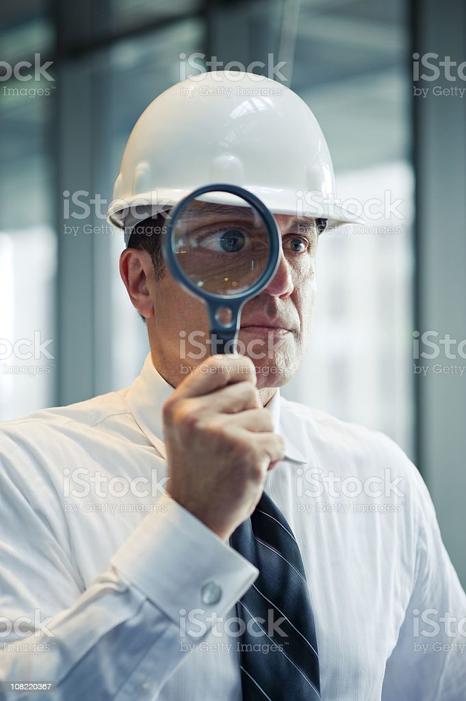 The Inspector royalty-free stock photo