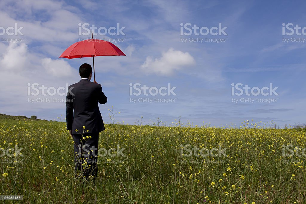 The insurance agent royalty-free stock photo