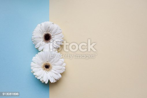 istock The international women's day background. 913081896