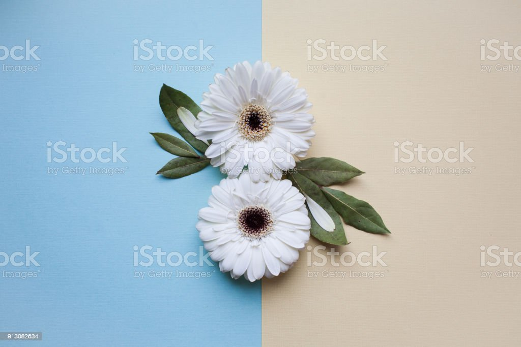 The international women's day background. stock photo