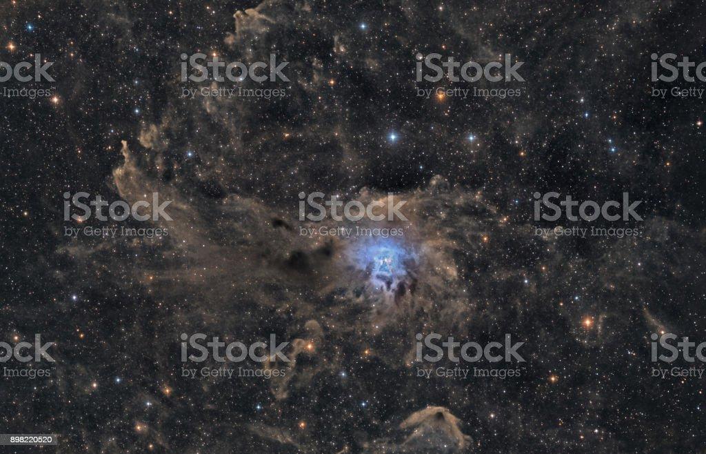 Der Iris-Nebel (NGC 7023) im Cepheus – Foto