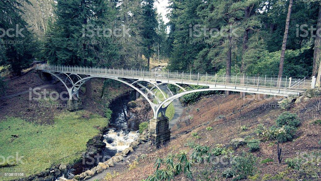 The Iron Bridge at Cragside, Northumberland stock photo