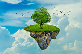 The island floats in the sky with 1 tree on the island. 3D