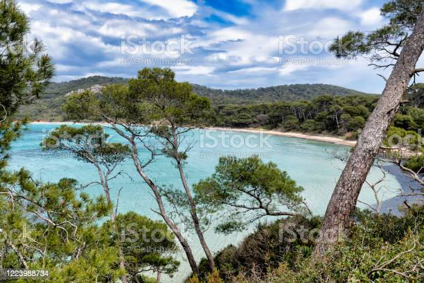 The Island Of Porquerolles In The Var In Provence On The Côte Dazur Stock Photo - Download Image Now