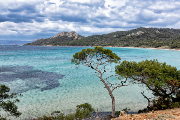 The island of Porquerolles in the Var, in Provence, on the Côte d'Azur stock photo