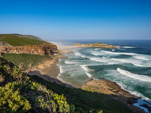 the island, robberg nature reserve, plettenberg bay, western cape, south africa - nature reserve stock photos and pictures