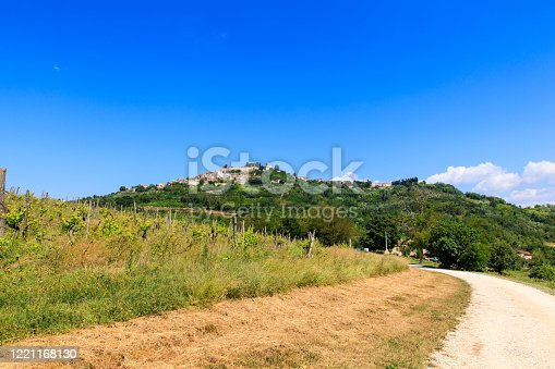istock The Istrian town of Motovun on a picturesque hill, Croatia 1221168130