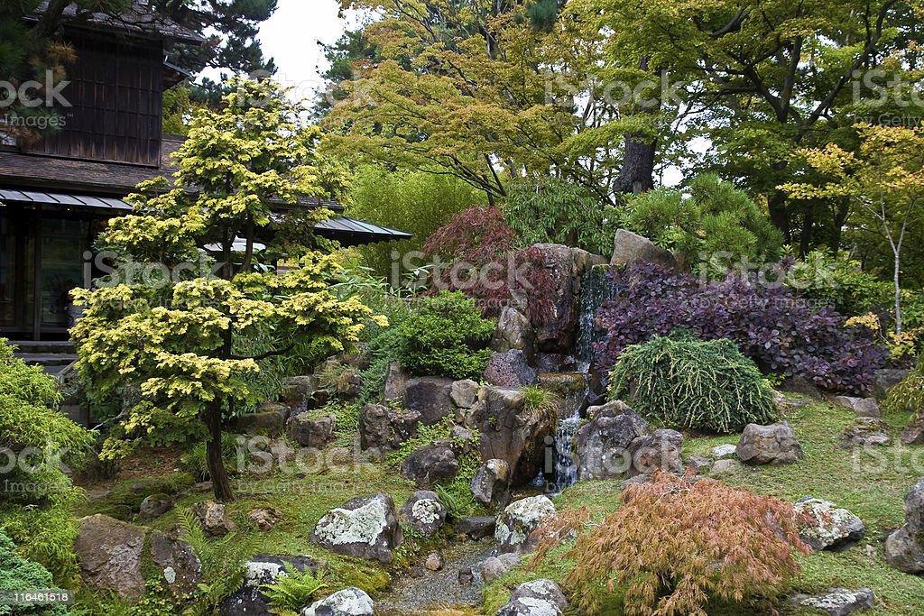 The Japanese Tea Garden stock photo