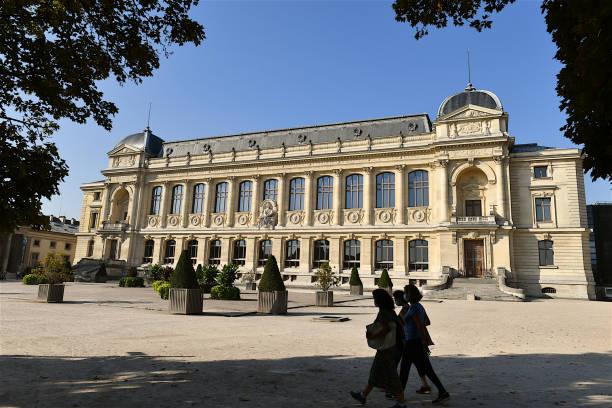 le jardin des plantes, jardin botanique, paris, france. - museum photos et images de collection