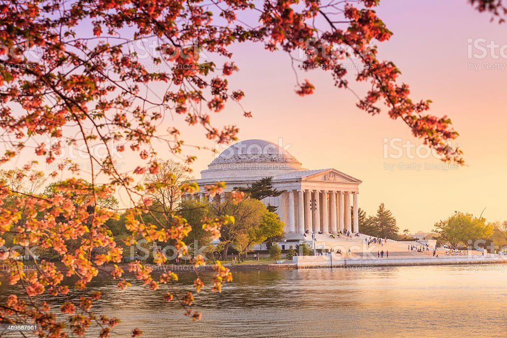 the Jefferson Memorial during the Cherry Blossom Festival in DC stock photo