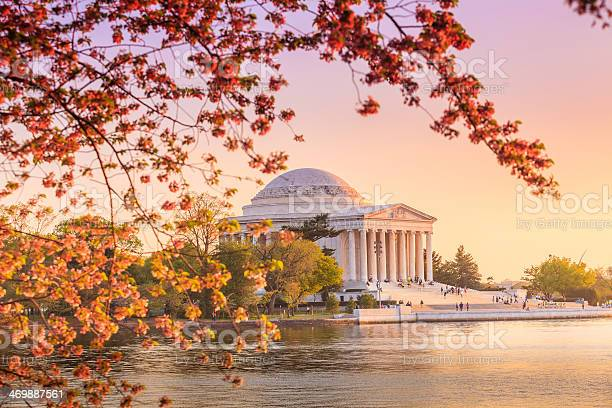 The Jefferson Memorial During The Cherry Blossom Festival In Dc Stock Photo - Download Image Now