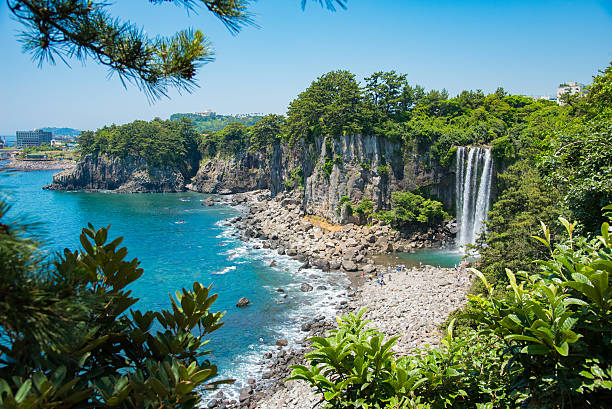 the jeongbang waterfall - jeju island stock photos and pictures