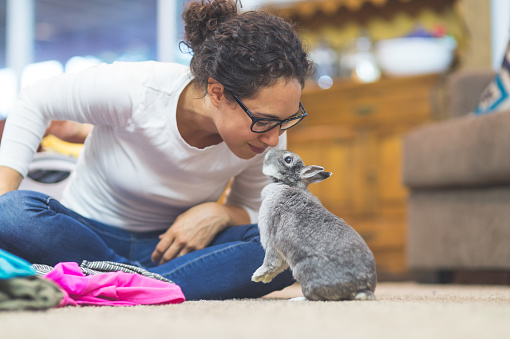Ethnic woman in her 20s folds laundry...but takes a break to give her pet bunny a kiss