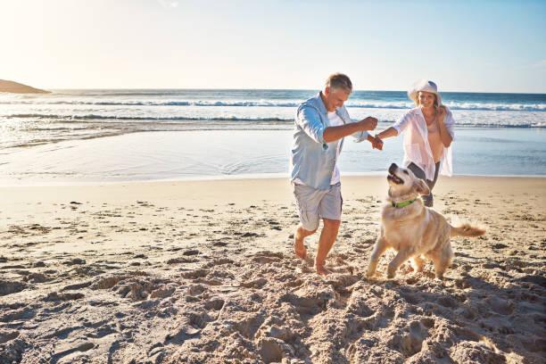 The joy of romping on a sandy beach picture id673344112?b=1&k=6&m=673344112&s=612x612&w=0&h=j h0erbxvywpsfvggxbqjuh2mmliddb9ul jkmwqs28=