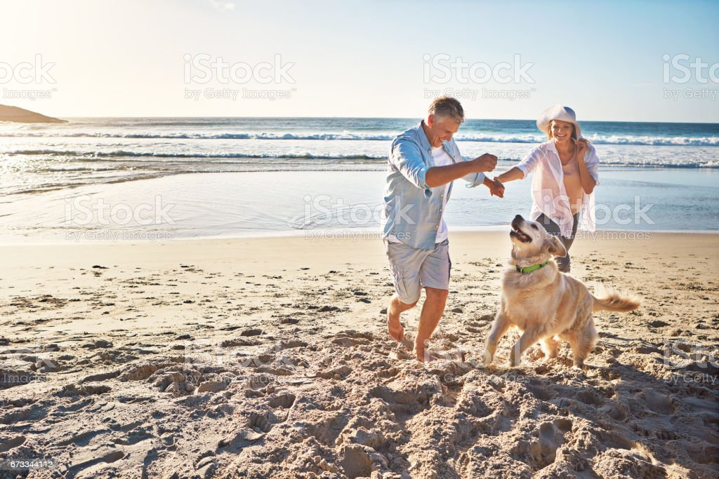 The joy of romping on a sandy beach! stock photo