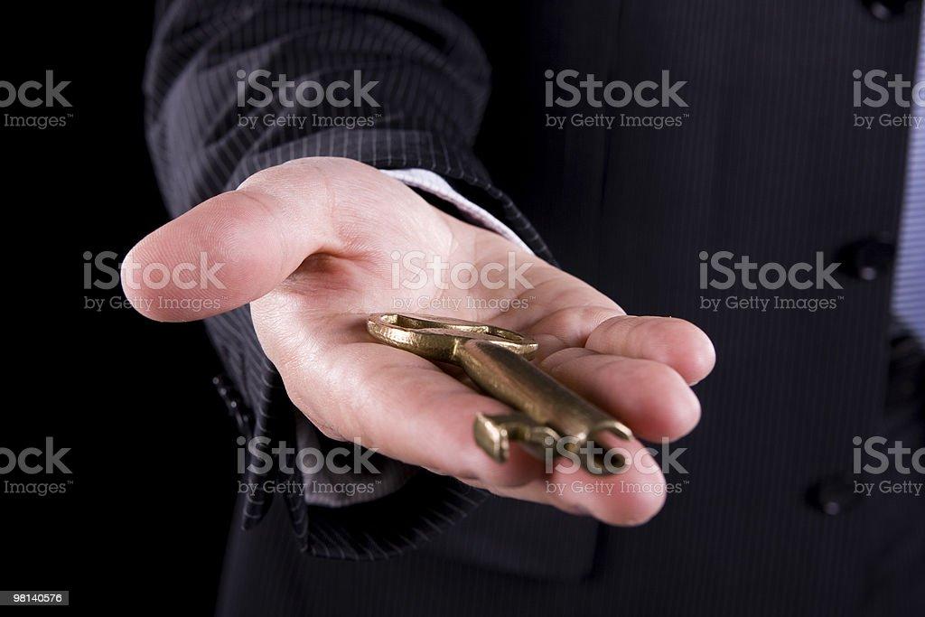 The Key royalty-free stock photo