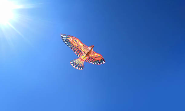 the kite in the form of a bird eagles soars high in the blue sky, the concept of freedom - pena de pássaro algodão imagens e fotografias de stock