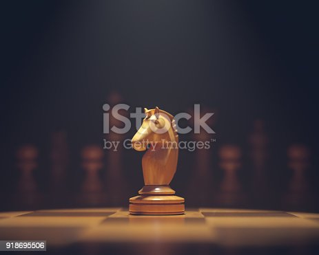 The knight in highlight. Pieces of chess game, image with shallow depth of field.