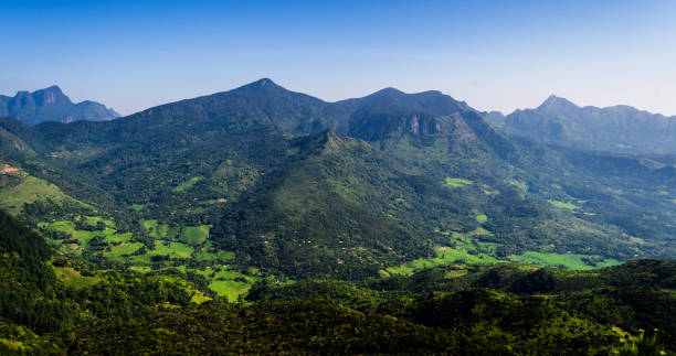 the knuckles mountain range in central sri lanka, kandy. - knuckle stock photos and pictures