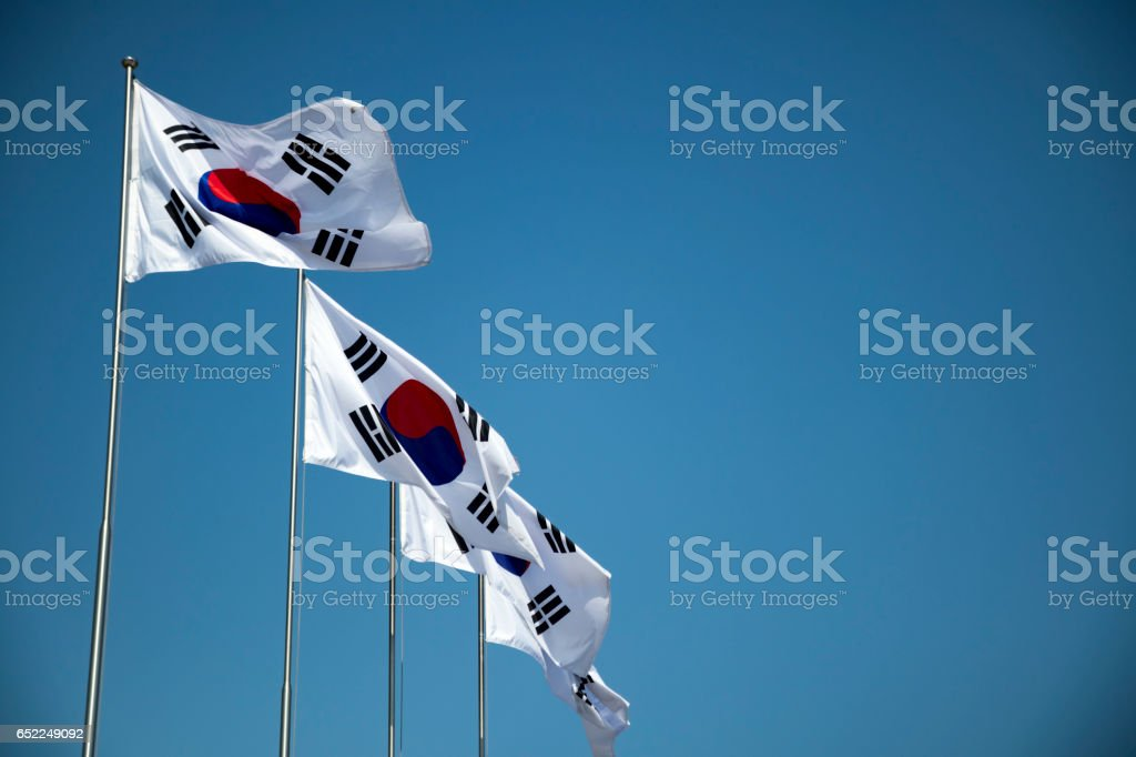 the korean national flags are fluttering in the wind. stock photo