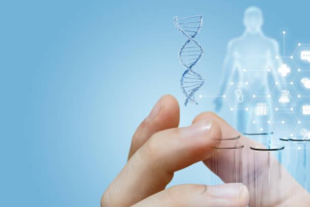 Das Labor Invastigation Röhren mit dna Modell und medizinische Service-Struktur in männlicher Hand. – Foto